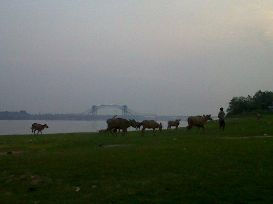 Pemandangan di Pulau Tayan