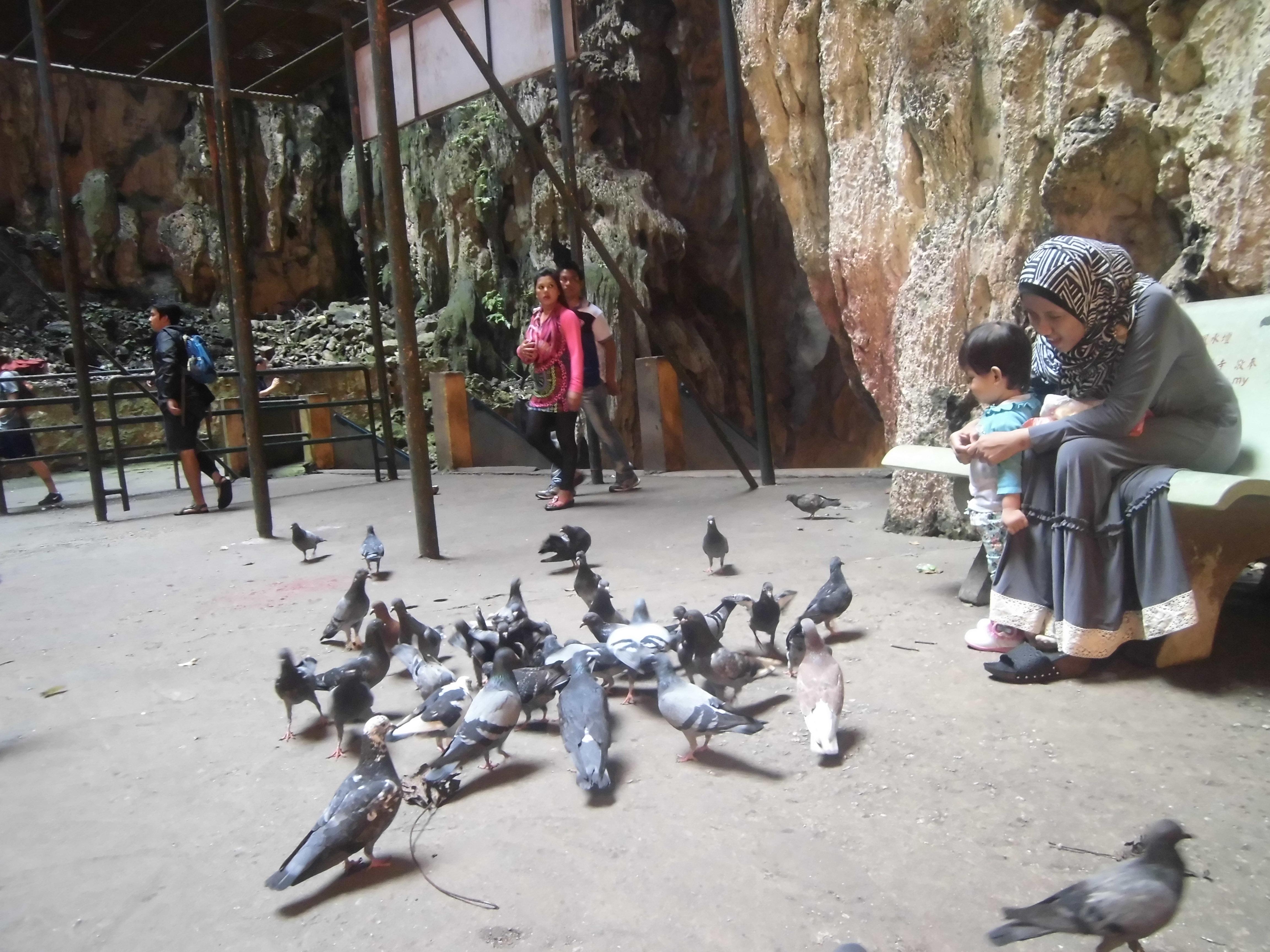 September 2015 Catatan Iqbal 100 Rupiah Burung Dara Batu Caves Penuh Dengan Kerumunan