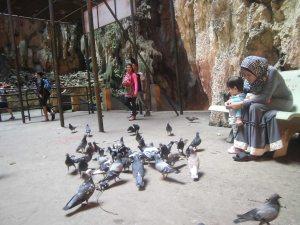 Batu Caves penuh dengan kerumunan burung dara